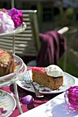 Piece of rhubarb cake on garden table