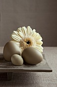 Gerbera and various types of eggs