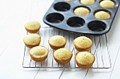 Muffin tin with cupcakes