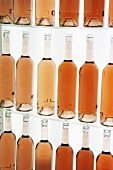 Bottles of rosé wine on shelves