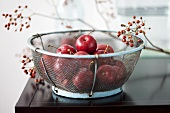 Crab apples in wire basket, twigs