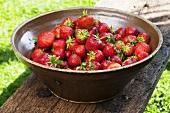 Strawberries in ceramic bowl