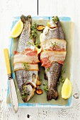 Stuffed trout with bacon, lemon and thyme