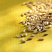 Grains of rye on yellow fabric