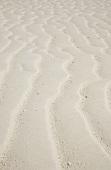 Ripples in sand (full-frame)