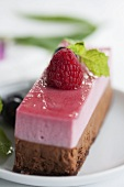 Raspberry and truffle cream slice