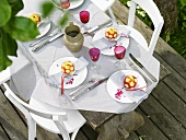 Laid table with apple decorations out of doors