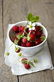 Woodland strawberries in a bowl