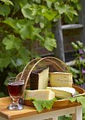 Various cheeses on tray in garden