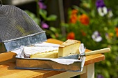 Pieces of two different cheeses in metal dish on garden table