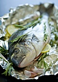 Sea bream with herbs on aluminium foil
