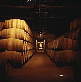 Port wine barrels of Taylor's Port, Vila Nova de Gaia, Portugal