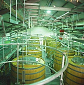 Wooden tanks, Capaia Winery, Philadelphia, S. Africa