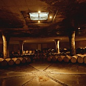 Barrique cellar of Vergelegen Estate, Helderberg, S. Africa