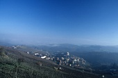The wine village of Barolo from a distance, Piedmont, Italy