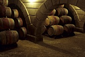 Alain Brumont wine cellar, Madiran, France