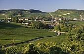 Commune of Montagny-les-Buxy, Buxy, Burgundy