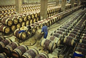 Cleaning wine barrels, Chateau Margaux, Medoc, France