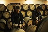 Filling wine barrels, Chateau Pichon Longueville Comtesse de Lalande