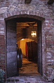 View into a wine cellar, Friuli, N. Italy