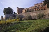 Castello di Brolio vom Weingut Ricasoli, Chianti Classico