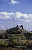 Pianella, the southern edge of Chianti Classico, Tuscany, Italy