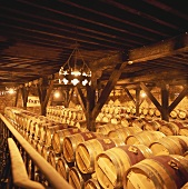 Wine cellar of Bodega Muga, Haro, Rioja, Spain
