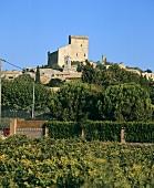 The town of Châteauneuf-Du-Pape, Rhône, France