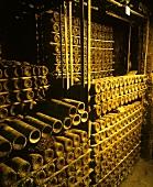 Im Keller von Marqués de Riscal, Elciego, Rioja Alavesa, Spanien