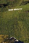 Ürziger Würzgarten, Mosel-Saar-Ruwer, Germany