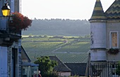 The wine village of Meursault, Burgundy, France