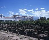 Bodega Norton, Lujan de Cuyo, Mendoza, Argentina