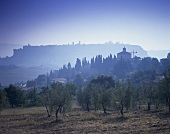 View of the town of Orvieto, Umbria, Italy