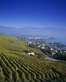 View of Lake Geneva, Switzerland