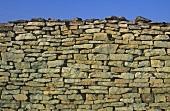 Stone wall around vineyard, Burgundy, France