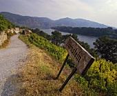 Signpost to Dürnstein by the Danube, Lower Austria