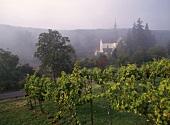 Kloster Eberbach, Hattenheim, Rheingau, Deutschland