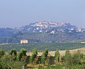 View of Montepulciano, Tuscany, Italy