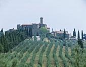 The Villa Banfi Estate, Montalcino, Tuscany, Italy