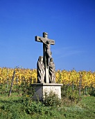 Wayside cross by a vineyard, Rheingau, Germany