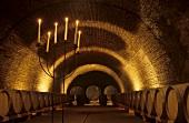 Barrel cellar, Weingut Jurtschitsch Sonnhof, Langenlois, Kamptal, Austria