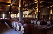 Barrel cellar, Church Road Winery, Hawke's Bay, N. Zealand