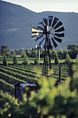 Old wind-powered irrigation system, Napa Valley, Calif., USA