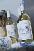 Bottles of white wine from Bordeaux