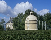 Château Latour, Pauillac, Médoc, Bordeaux, France