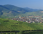 View of Ammerschwihr, Alsace, France