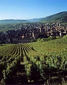 View of Riquewihr, Alsace, France