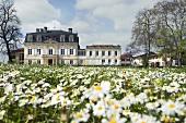 Chateau Pontet-Canet, 5e Cru, Pauillac, Frankreich