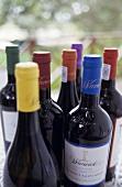 Warwich Estate wines, Stellenbosch, S. Africa