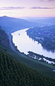The wine village of Ürzig, Mosel-Saar-Ruwer, Germany